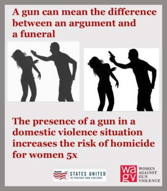 Image result for guns and domestic violence